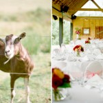 JenLynnePhotography_New_Zealand_wedding35